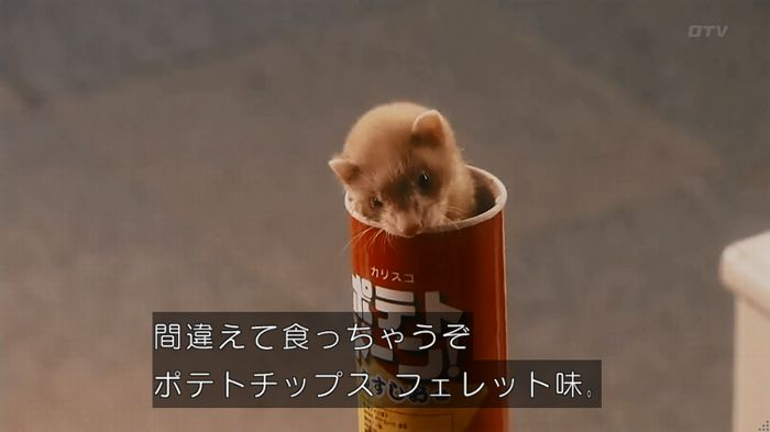 警視庁いきもの係 8話のキャプ416