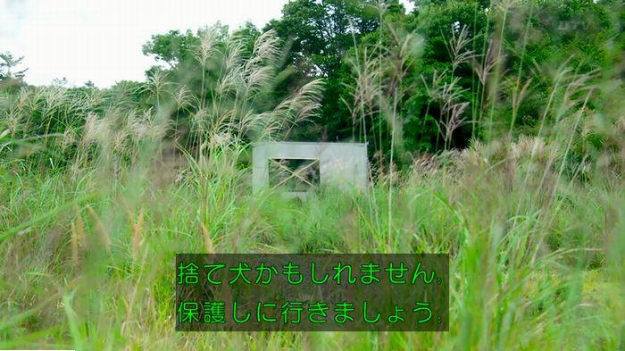 警視庁いきもの係 最終話のキャプ173