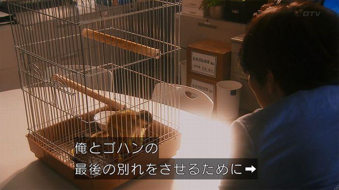 いきもの係 5話のキャプ652