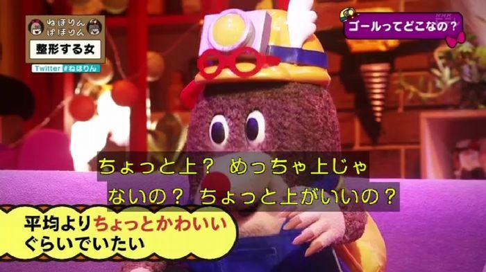 ねほりんぱほりんのキャプ395