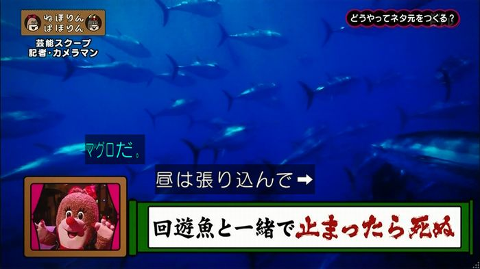 ねほりん 芸能スクープ回のキャプ60