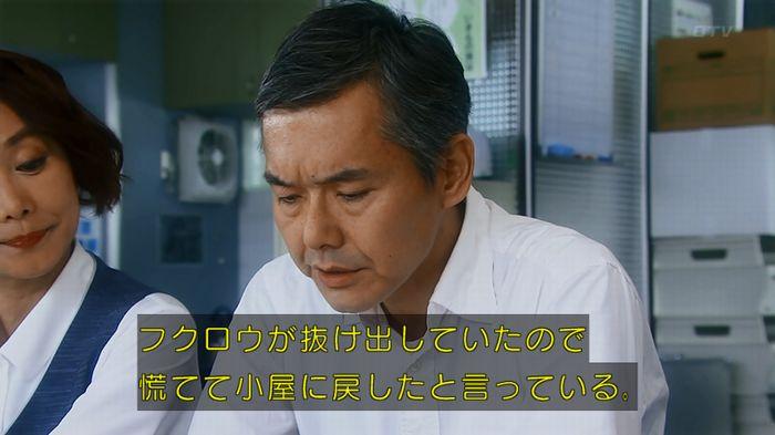 警視庁いきもの係 8話のキャプ547