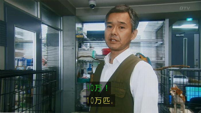 警視庁いきもの係 最終話のキャプ137