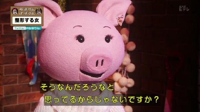 ねほりんぱほりんのキャプ38