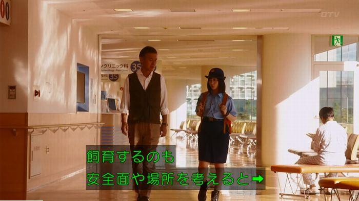 警視庁いきもの係 最終話のキャプ327