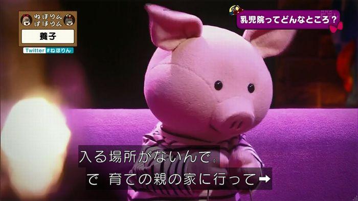 ねほりん 養子回のキャプ48