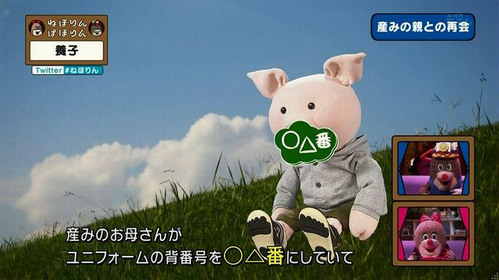 ねほりん 養子回のキャプ331