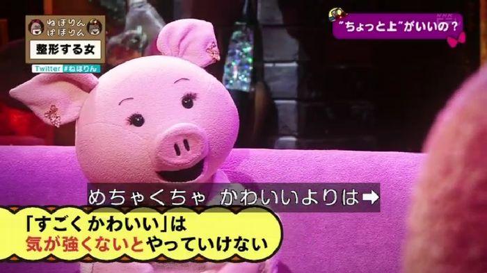ねほりんぱほりんのキャプ400