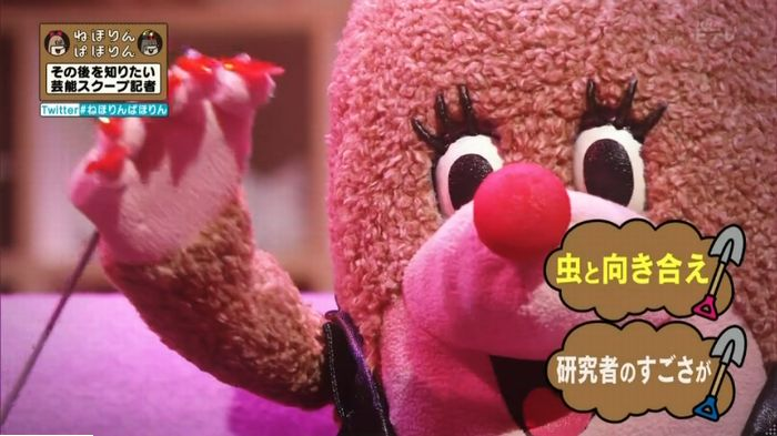 ねほりんぱほりんのキャプ503