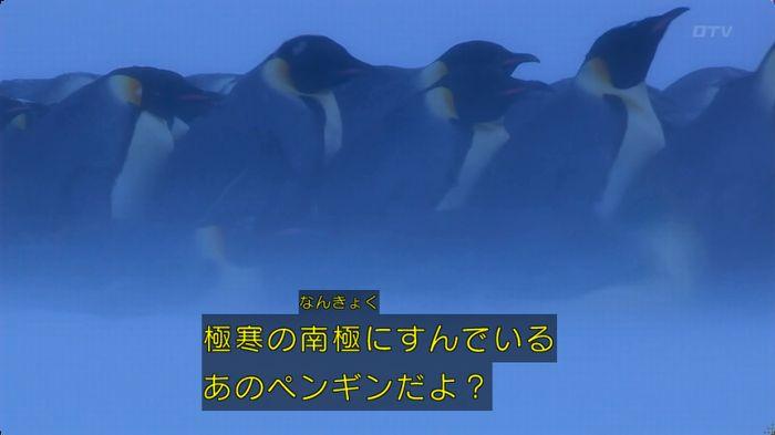 いきもの係 2話のキャプ19