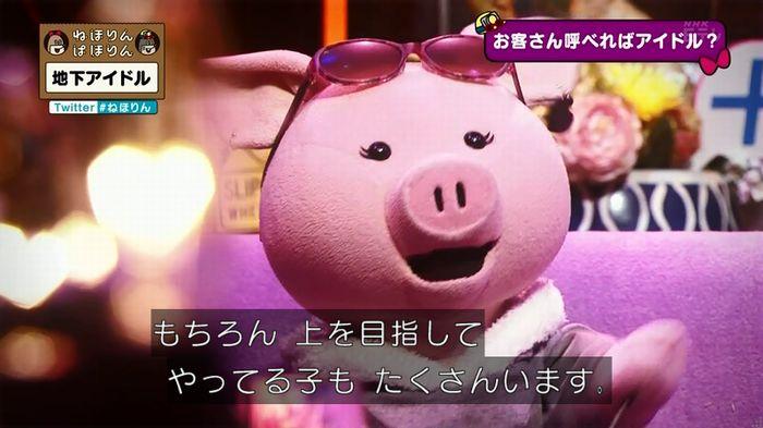 ねほりん 地下アイドル回のキャプ245
