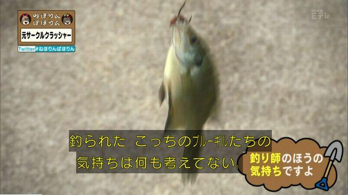 ねほりんぱほりん サークルクラッシャーのキャプ228