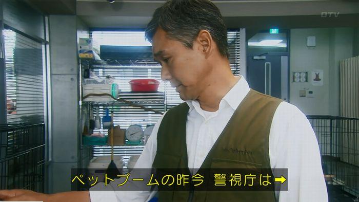 警視庁いきもの係 最終話のキャプ138