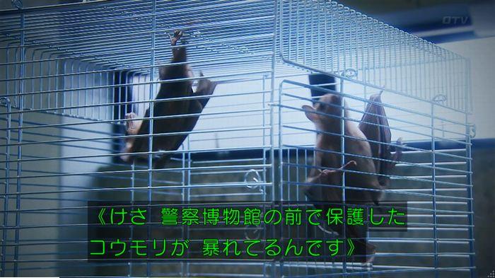 警視庁いきもの係 最終話のキャプ413