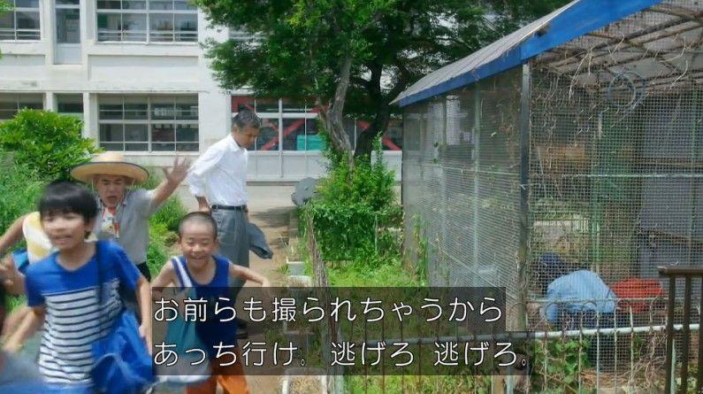 いきもの係 4話のキャプ336