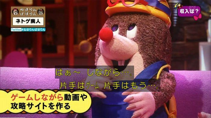 ねほりんネトゲ廃人のキャプ244