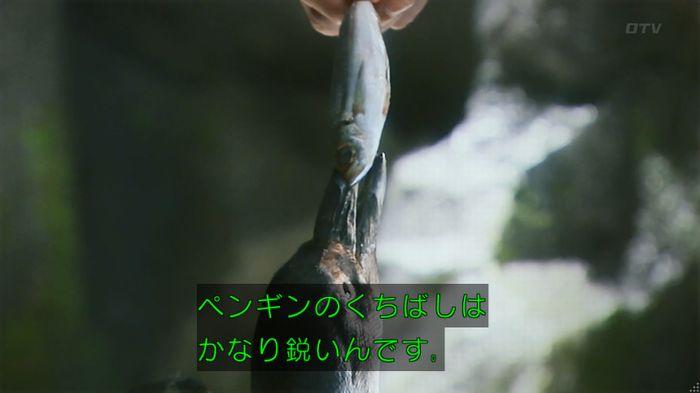いきもの係 2話のキャプ161