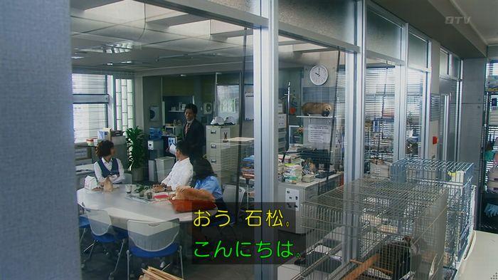 いきもの係 2話のキャプ847