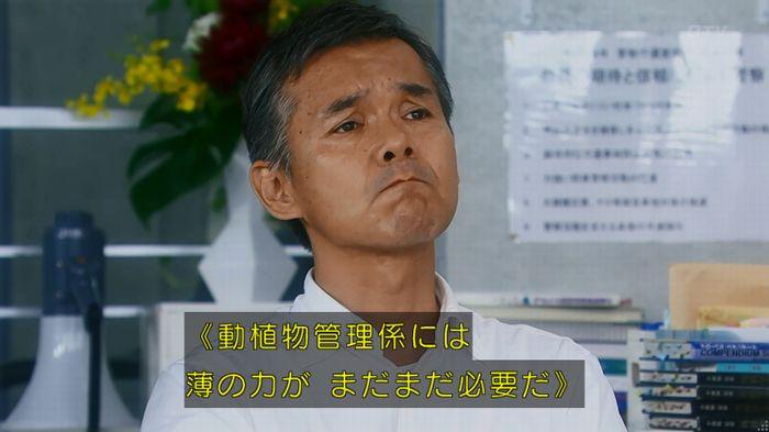 警視庁いきもの係 8話のキャプ839