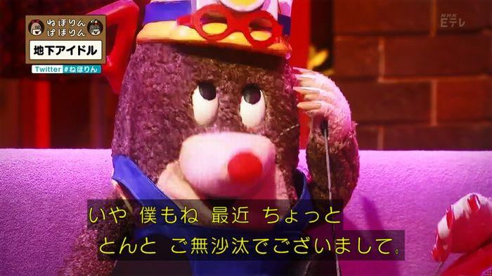 ねほりん 地下アイドル回のキャプ31