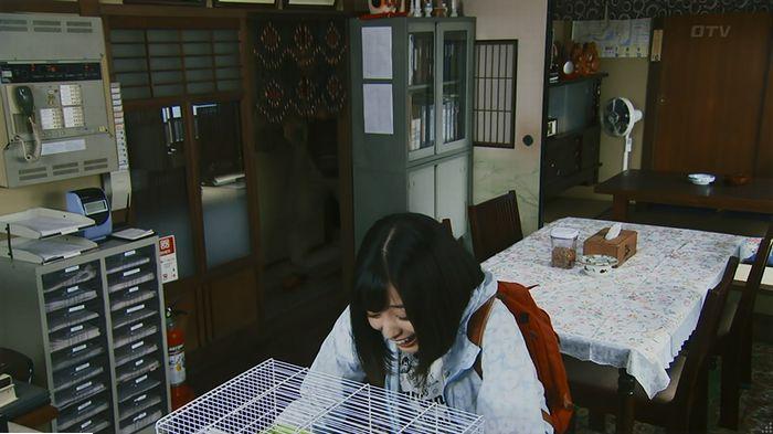 警視庁いきもの係 9話のキャプ104