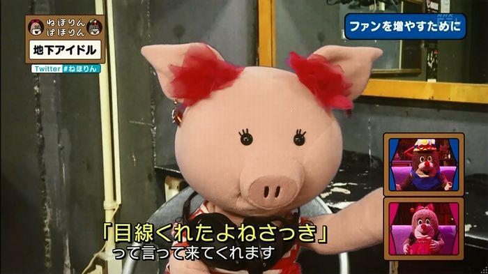ねほりん 地下アイドル回のキャプ368