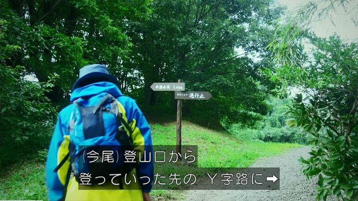 警視庁いきもの係 9話のキャプ503