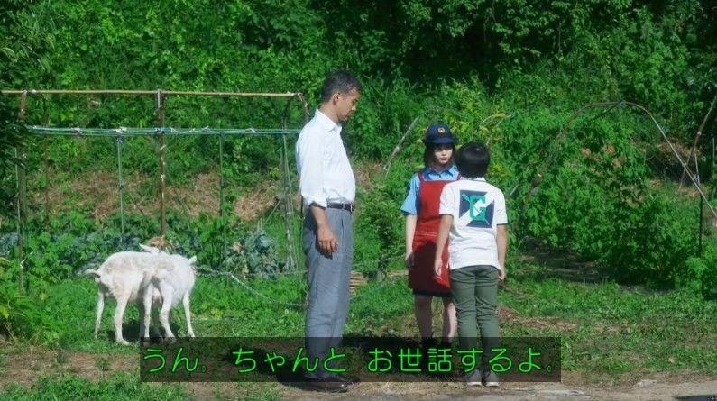 いきもの係 4話のキャプ269