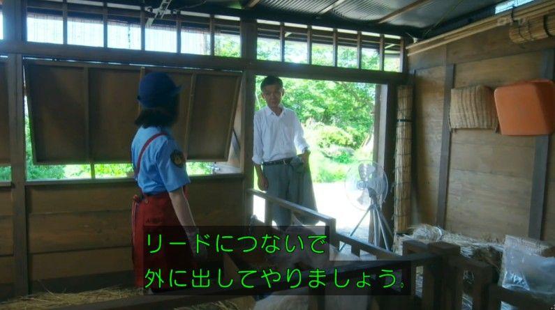 いきもの係 4話のキャプ253