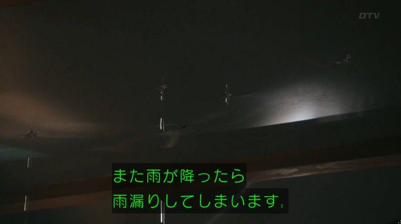 いきもの係 4話のキャプ456