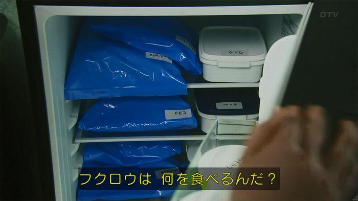 警視庁いきもの係 8話のキャプ222