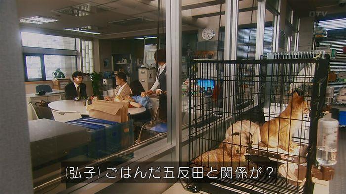 いきもの係 5話のキャプ345