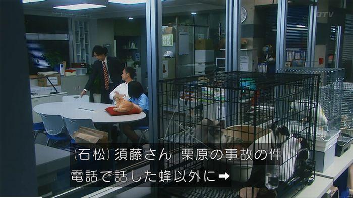 警視庁いきもの係 9話のキャプ637