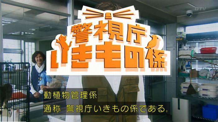 警視庁いきもの係 最終話のキャプ144