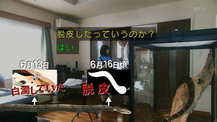 いきもの係 3話のキャプ262