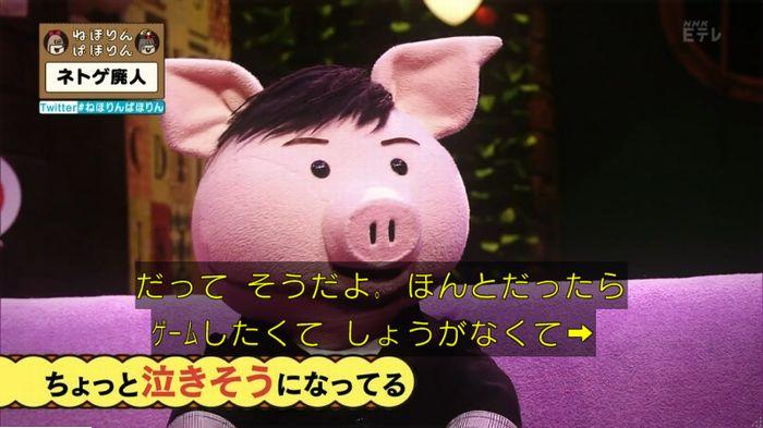ねほりんネトゲ廃人のキャプ484