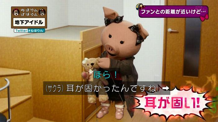 ねほりん 地下アイドル後編のキャプ170
