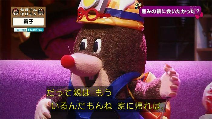 ねほりん 養子回のキャプ293