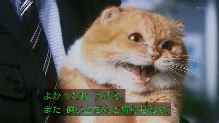 警視庁いきもの係 最終話のキャプ814
