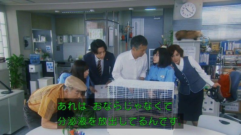いきもの係 4話のキャプ106