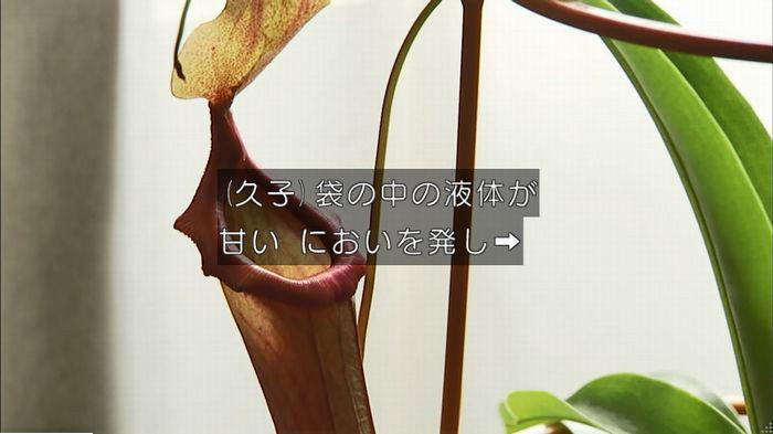 ウツボカズラの夢6話のキャプ620