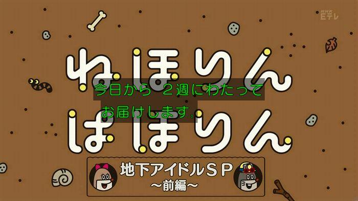 ねほりん 地下アイドル回のキャプ22