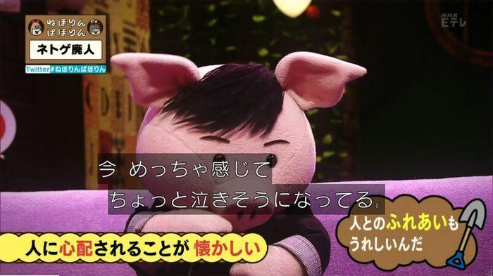 ねほりんネトゲ廃人のキャプ483