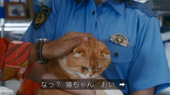 いきもの係 5話のキャプ858