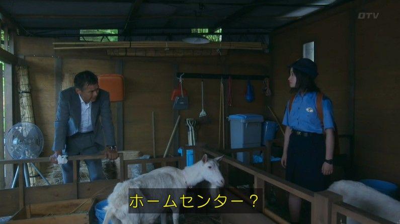 いきもの係 4話のキャプ454