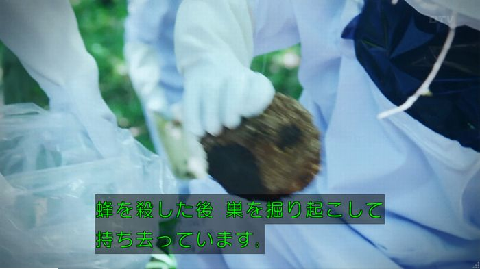 警視庁いきもの係 9話のキャプ585