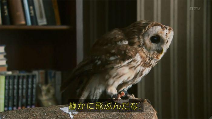 警視庁いきもの係 8話のキャプ206