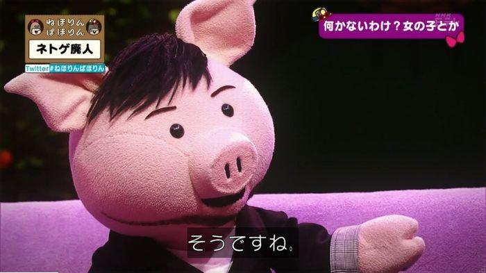 ねほりんネトゲ廃人のキャプ333
