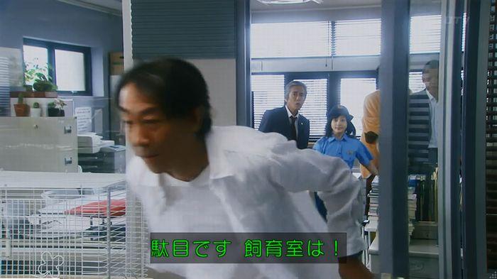 警視庁いきもの係 最終話のキャプ692