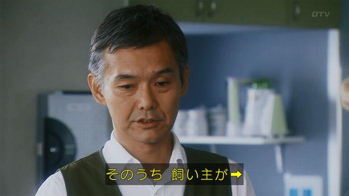 警視庁いきもの係 8話のキャプ79